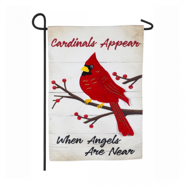Cardinals Appear When Angels Are Near White Background