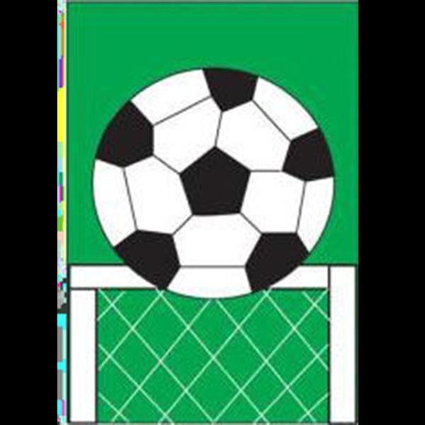 Soccer House Flag